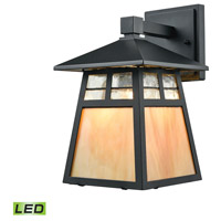 Cottage LED 11 inch Matte Black Outdoor Wall Sconce