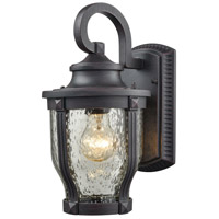 Graphite Black Glass Outdoor Wall Lights