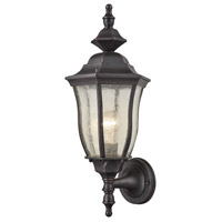 Elk Lighting Bennet 1 Light Outdoor Wall Sconce in Graphite Black 87080/1