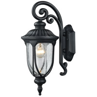 Elk Lighting Derry Hill 1 Light Outdoor Wall Sconce in Matte Black 87100/1