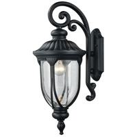 Elk Lighting Derry Hill 1 Light Outdoor Wall Sconce in Matte Black 87101/1