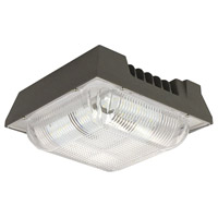 CAN Series LED 9 inch Dark Bronze Outdoor Canopy Light