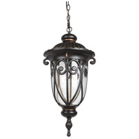 Elitco Lighting OD2504 OD25 Series LED 11 inch Weathered Bronze Outdoor Pendant