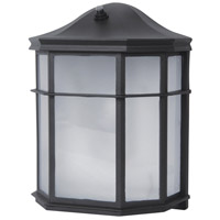 Tybee LED 10 inch Black Outdoor Wall Lantern