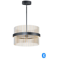 ET2 E34205-BKSNSBR Chimes 2 Light 24 inch Black and Satin Nickel and Satin Brass Single Pendant Ceiling Light