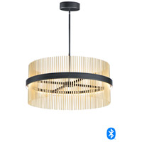 ET2 E34207-BKSBR Chimes 2 Light 34 inch Black and Satin Brass Single Pendant Ceiling Light