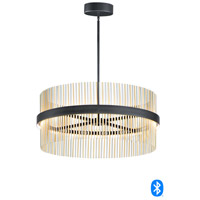 ET2 E34207-BKSNSBR Chimes 2 Light 34 inch Black and Satin Nickel and Satin Brass Single Pendant Ceiling Light