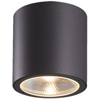EuroFase Outdoor Ceiling Lights