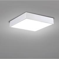EuroFase 29002-30-028 Mac LED 15 inch White Flush Mount Ceiling Light