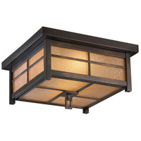 Capistrano 2 Light 17 inch Warm Bronze Patina Outdoor Flush Mount