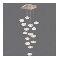 Fine Art Lamps Natural Inspirations 15 Light Drop Light in Gold-Toned Silver Leaf 853040-22ST