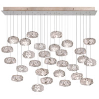 Fine Art Lamps Natural Inspirations 28 Light Drop Light in Gold-Toned Silver Leaf 853640-21ST
