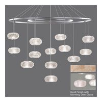 Fine Art Lamps Natural Inspirations 12 Light Drop Light in Gold-Toned Silver Leaf 862640-22ST