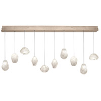 Fine Art Lamps Natural Inspirations 10 Light Drop Light in Gold-Toned Silver Leaf 863240-23ST