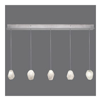 Fine Art Lamps Natural Inspirations 5 Light Drop Light in Silver Leaf 863340-13ST