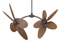 Fanimation CABPP4BR Caruso Composite Palm Brown/Red 22 inch Set of 10 Fan Blades photo thumbnail