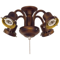 Fanimation Traditional Fitter Fan Light Kit in Tortoise Shell F404TS