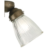 Signature Clear 2 inch Glass Shade in Clear Ribbed