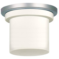 Fanimation Zonix Fan Light Kit in Satin Nickel LK4620SN