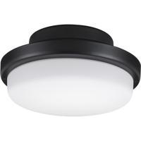 Fanimation LK8514BLW TriAire Custom 1 Light Black Fan Light Kit