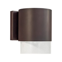 Forte Lighting 1253-01-32DS Signature 1 Light 9 inch Antique Bronze Outdoor Wall Light