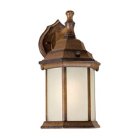 Forte Lighting 17004-01-41 Signature 1 Light 12 inch Rustic Sienna Outdoor Wall Lantern