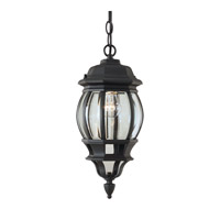 Signature 1 Light 7 inch Black Outdoor Pendant