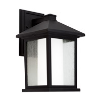 Forte Lighting 1857-01-04 Signature 1 Light 14 inch Black Outdoor Wall Light photo thumbnail