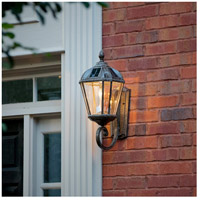 Royal Bulb LED 21 inch Weathered Bronze Solar Wall Light