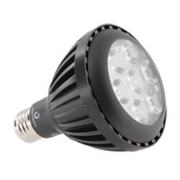Titanium Dimmable PAR30 E26 9 watt 3000K LED Bulb