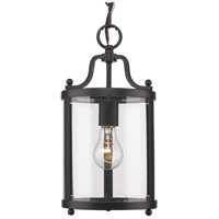 Golden Lighting 1157-M1L-BLK Payton 1 Light 7 inch Black Mini Pendant Ceiling Light
