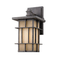 Golden Lighting Tucson 1 Light Outdoor Wall Lantern in Weathered Iron 11705-S-WI photo thumbnail