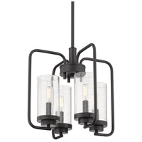 Golden Lighting 2380-4-BLK-SD Holden 4 Light 16 inch Black Mini Chandelier Ceiling Light