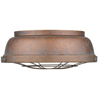 Bartlett 2 Light 14 inch Copper Patina Flush Mount Ceiling Light