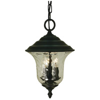 Hartford 3 Light 9 inch Charcoal Exterior Ceiling Lantern