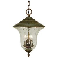 Hartford 3 Light 11 inch Raw Copper Exterior Ceiling Lantern