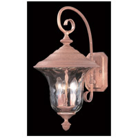Carcassonne 3 Light 20 inch Raw Copper Exterior Wall Lantern