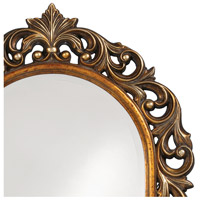 Howard Elliott Collection 2058 Orleans 47 X 30 inch Antique Gold Wall Mirror, Rectangle alternative photo thumbnail