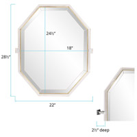 Howard Elliott Collection 48056 Axel 28 X 22 inch Silver Stainless Steel Trim Wall Mirror, Octagonal alternative photo thumbnail