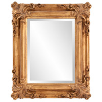 Howard Elliott Collection 56007 Edwin 23 X 19 inch Rustic Antique Gold Wall Mirror, Rectangle