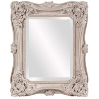 Howard Elliott Collection 56138 Sara 22 X 18 inch Antique Taupe Wall Mirror, Rectangle photo thumbnail