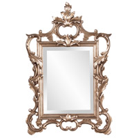 Howard Elliott Collection 84012 Andrews 32 X 20 inch Antique Champagne Silver Leaf Wall Mirror, Rectangle photo thumbnail