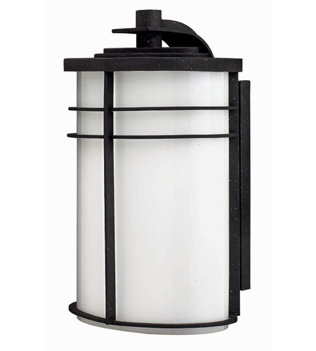 Hinkley Lighting Ledgewood 1 Light Outdoor Wall Lantern in Vintage Black 1125VK-ES
