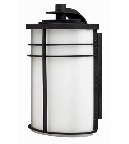 Hinkley Lighting Ledgewood 1 Light Outdoor Wall Lantern in Vintage Black 1125VK-ESDS