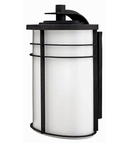 Hinkley Lighting Ledgewood 1 Light Outdoor Wall Lantern in Vintage Black 1129VK-ESDS