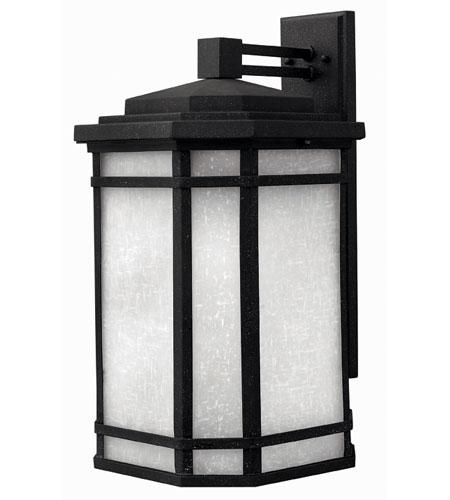 Hinkley Lighting Cherry Creek 1 Light Outdoor Wall Lantern in Vintage Black 1275VK-ESDS
