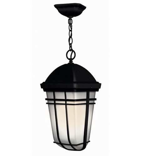 Hinkley Lighting Buckley 1 Light Outdoor Hanging Lantern in Black 1372BK-ES