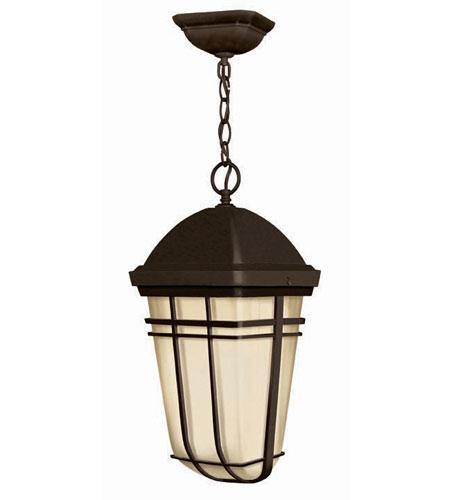 Hinkley Lighting Buckley 1 Light Outdoor Hanging Lantern in Olde Bronze 1372OB