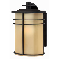 Hinkley Lighting Ledgewood 1 Light Outdoor Wall Lantern in Museum Bronze 1120MR-ES photo thumbnail