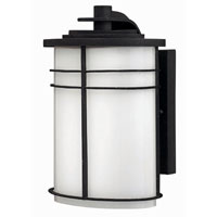 Hinkley Lighting Ledgewood 1 Light Outdoor Wall Lantern in Vintage Black 1120VK-EST